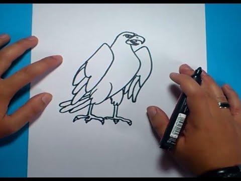 Como dibujar un aguila paso a paso 2 - PintayCrea.over-blog.com