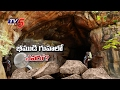 10,000 years of mystery surrounding Bhimbetka caves; Watch..