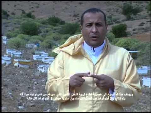 حصيلة مواكبة منجزات السيد عزيز أخنوش بإقليم تيزنيت