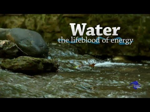 Water The Lifeblood of Life