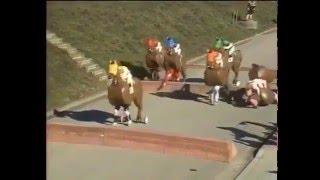 Carrera de caballos peculiar