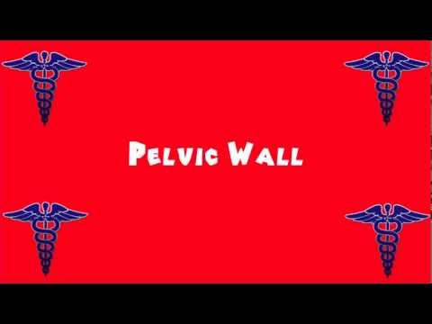 Pronounce Medical Words ― Pelvic Wall
