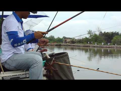 Hình ảnh trong video Giải Câu Giao Lưu Mùa Hè 8 : TGCC.VN
