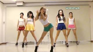 PSY싸이 GANGNAM STYLE (강남스타일) Waveya