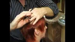 Free Master class in how to style short hair how to develop head shape by Fran Smith view on youtube.com tube online.