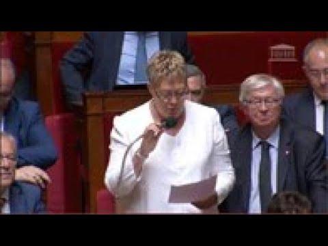 Mme Marianne Dubois - Loi de programmation militaire et service national universel