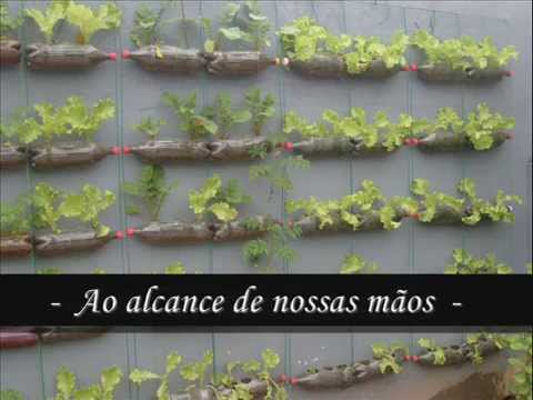 horta orgânica e ecológica, meio ambiente e reciclagem