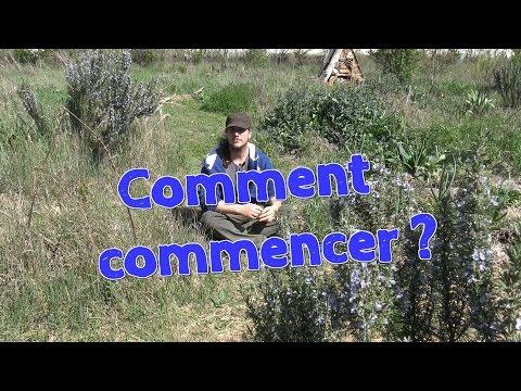 Comment commencer en Permaculture ou en Agroécologie ?