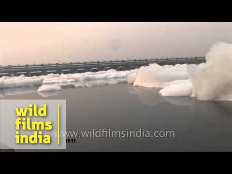 Yamuna: one of the most polluted river