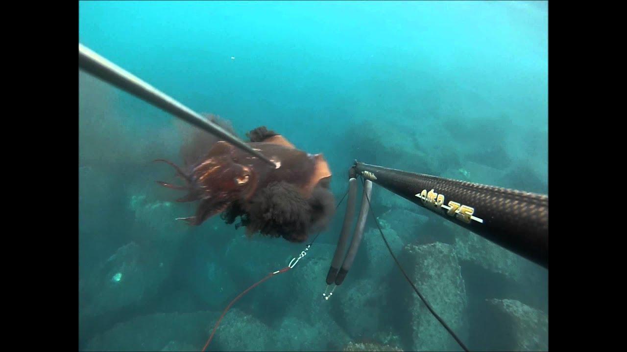 pèche sous marine en Grèce