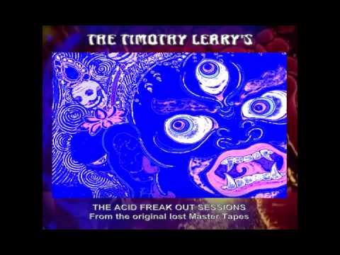 HOUSE OF THE HIGH  - THE TIMOTHY LEARY'S (RARE PSYCH-FREAK-BEAT)