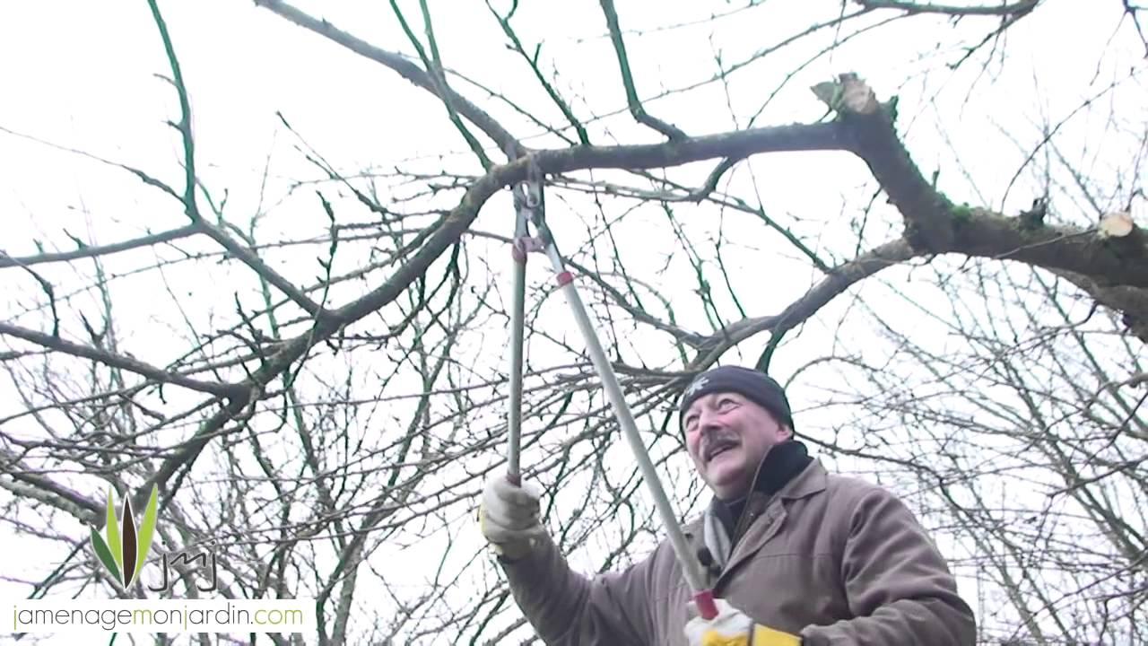 - Comment tailler les arbres fruitiers ...