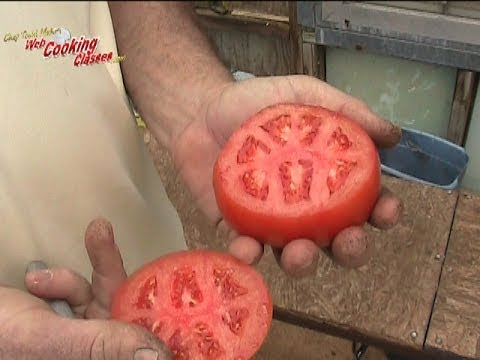 How To Grow Thousands Of Tomatoes Indoors