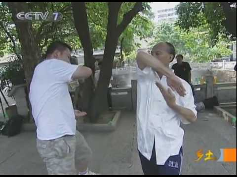 Wing Chun Boxing of Shunde part 2 of 2