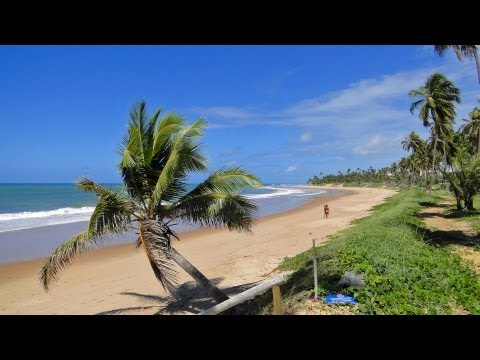 Praia do Forte / Brazil - endless beautiful palm beaches in HD - new !