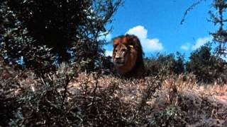 Tarzan (1966 TV Series) Full Intro And Opening Title Theme