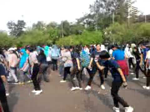 (fancam) flashmob indonesia @monas superjunior bonamana.mp4