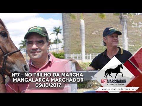 #7 - NO TRILHO DA MARCHA - NET MARCHADOR - MANGALARGA MARCHADOR 09/10/2017