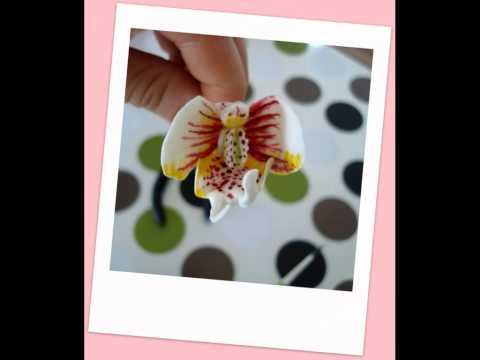 Zucker Orchidee/ Orchideenzweig Teil 1/ Blütenpaste/ Motivtorten Dekoration