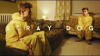 Short Film Trailer - Stray Dog