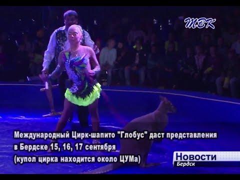 Международный цирк-шапито «Глобус» впервые прибыл в Бердск