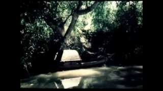 Cô gái trên sông