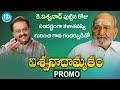 Director Viswanath birthday special video, promo..