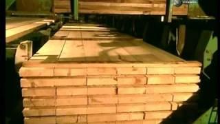 Ako sa to robí - Stavebné drevo