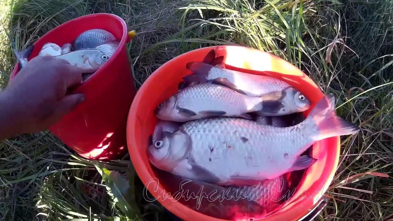 летовцы рыбалка