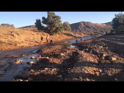 عودة المياه العذبة إلى واد ألنيف