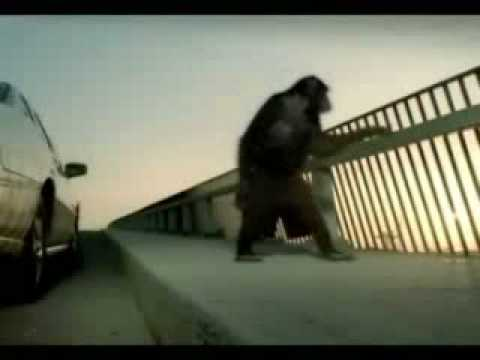 Trunk Monkey Commercials,