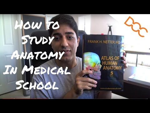 How to Study Anatomy in Medical School