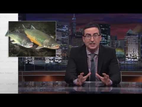 Last Week Tonight with John Oliver: Salmon Cannon (HBO)