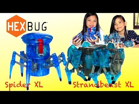 Hexbug Spider Xl Strand Beast Xl Surprise Egg Game