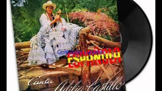 Adilia Castillo Española Colección Lujomar.wmv