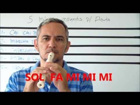 5 musicas infantis ( flauta doce)