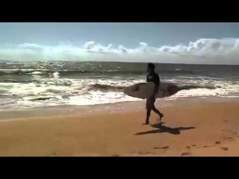 Ataques de tubarão- Brasil é o país com maior incidência de casos