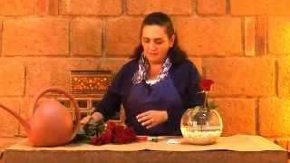 Centro De Mesa Con Rosas Rojas Para XV Años DIY