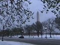 Winter Storm Covers DC Streets in Snow, Slush