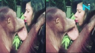 Watch: Love reloaded! Chimpanzee showers kisses on Sambhav..