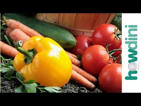 Organic gardening - How to grow an organic vegetable garden