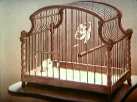 Hitlers Traum von Micky Maus - Zeichentrick unterm Hakenkreuz  [Doku Deutsch]