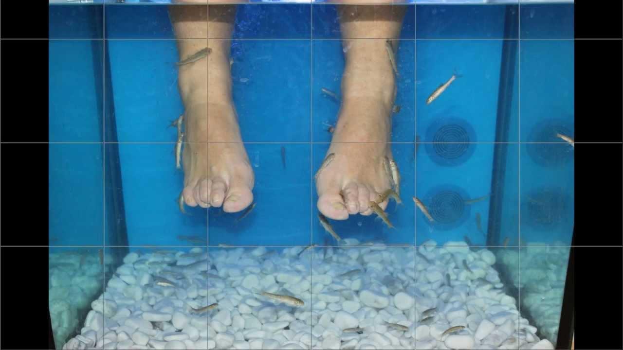 La dermatite di atopic che avviene con un organismo