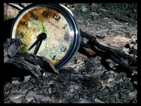 (Любительское) Владимир Ефимов - «Время-река»