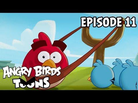 Angry Birds Toons #11 - Lekce praku 101