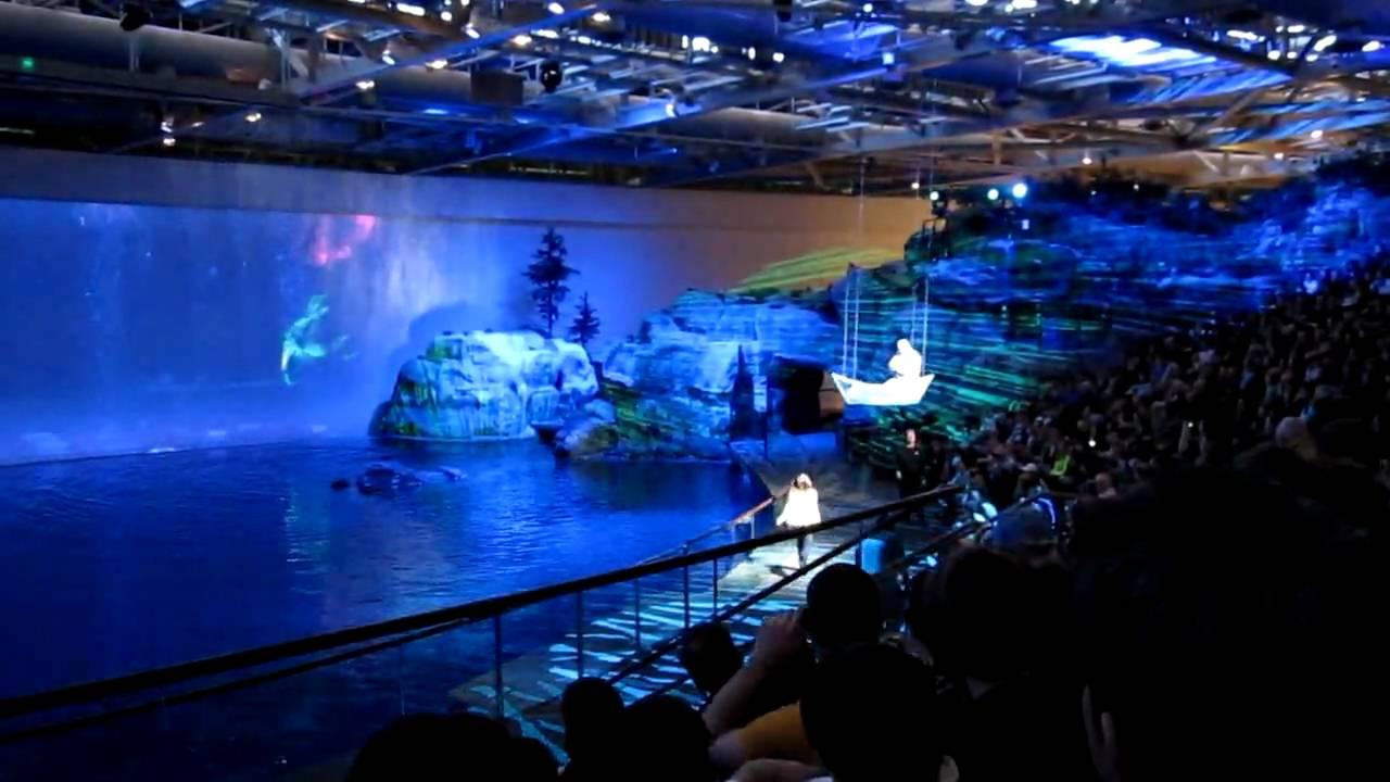 Shedd Aquarium Fantasea Initial Boat Scene Youtube