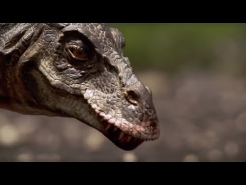 T-Rex : Attack of the Dinosaur - Walking with Dinosaurs in HQ - BBC