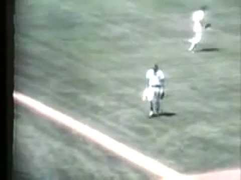 Best Baseball Play Ever - Rick Monday Saves the US Flag