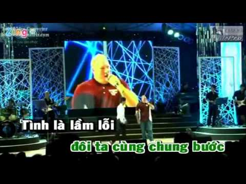 Anh Moi Chinh La Nguoi Em Yeu  Ly Hai Karaoke] (Dual Audio)