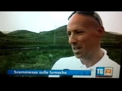 RAI 3 IL SETTIMANALE allevamento lumache Miceli's Snail di Ciro Miceli del 29 03 2014 BURGIO AG